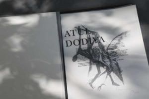 40-atul-dodiya