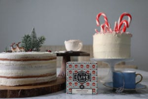 Christmas photo shoot for No. 3 Clive Road